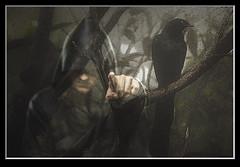 Photo artistry - go (mcleod.robbie) Tags: dark raven fantasy bird command darkness