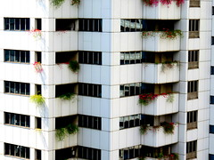 The plants are taking over (oobwoodman) Tags: malaysia malaisie malaysien kualalumpur skyscrapers gratteciel wolkenkratzer apartments windows fentres fenster