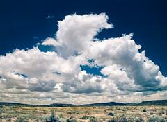 Farther Down the Road (LXG_Photos) Tags: analog m645 rollei rolleidigibasecr200pro southwest film skynewmexico