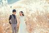 [somewhere in Himeji] 芒 (pooldodo) Tags: wedding prewedding fujifilm xpro2 pooldodo taotzuchang himeji 日本 海外婚紗 oversea bride groom 破渡
