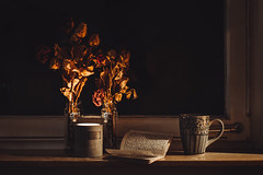 a cosy night (the girl who made it on her own) Tags: ronakeller diary writing driesroses windowsill candle candlelight warmlight warm warmth darkness dark darkoutside acosynight cosynight cosy journal cup cupoftea catchinguponmydiary words reflection