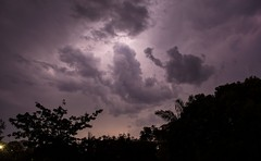 December 6th (dustaway) Tags: lightning cloudscape thunderstorm storm australianweather summer lismore northernrivers nsw australia