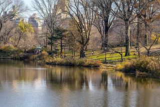 Color of Autumn 2016 In NYC (Urban Skyline View Along Central Park Lake)