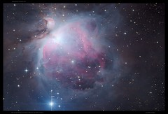 The Great Nebula in Orion ( Messier 42, NGC 1976 ) by Mike O'Day ( https://500px.com/mikeoday ) (Mike O'Day) Tags: great orion nebula constellation ngc 1976 messier42 messier43 m42 m43 dslr unmodified nikon d5300 skywatcher quattro newtonian telescope astro astrophotography astronomy mike oday mikeoday astrometrydotnet:id=nova1846437 astrometrydotnet:status=solved