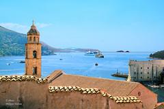 Dubrovnik et son port (philippedaniele) Tags: vividstriking
