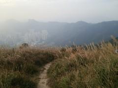 DSC_0264 (tak.wing) Tags: kowloonpeak 飛鵝山 hongkong 香港