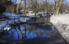 Central Park Sidewalk (lefeber) Tags: city nyc newyorkcity trees urban snow newyork reflection water landscape puddle vanishingpoint streetlamp centralpark branches perspective sidewalk lamppost