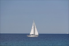 Sail Away (Sue90ca Flick*r Is Flick*ring Again) Tags: sky sailboat canon clear middle onblue inthemiddle 60d