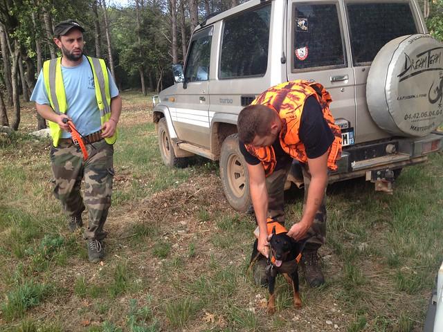Fred et Remy préparent les chiens
