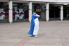 (Jani Kuusonen) Tags: penguin mascot valio pingviini