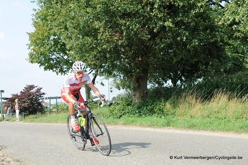 Geel Oosterlo  (132)