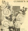 Image from page 67 of Curries farm and garden annual : spring 1917 (1917)