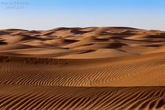 Dunes (TARIQ-M) Tags: sky cloud mountains art texture sahara water landscape sand picnic waves pattern desert ripple patterns dunes wave camel waterfalls palmtree abstraction ripples camels riyadh saudiarabia hdr blowingsand canonef70200mmf4lusm canonef1635mmf28liiusm dahna canoneos5dmarkii tuwaiq canoneos5dmarkiii canonef100400f4556l tariqm aldahna tariqalmutlaq kingofdesert 100606169424624226321poststariqm1 tariqm1