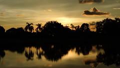 Bradenton Sunset (Jim Mullhaupt) Tags: pink blue sunset red wallpaper sky orange sun lake color reflection tree silhouette yellow clouds landscape evening pond oak nikon flickr florida palm coolpix bradenton p510 mullhaupt cloudsstormssunsetssunrises jimmullhaupt