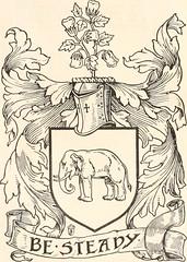 Anglų lietuvių žodynas. Žodis silver fox reiškia Sidabrinė lapė lietuviškai.