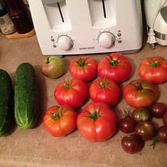 "And so it begins! Our first real harvest - all started from @cubits seeds - DEELISH! • <a style=""font-size:0.8em;"" href=""http://www.flickr.com/photos/10624169@N08/14793029920/"" target=""_blank"">View on Flickr</a>"