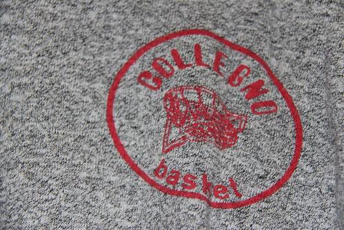 Dettaglio Logo Collegno Basket
