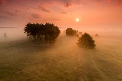 Doldersummerveld (Olger Ernst) Tags: park sky mist netherlands field misty fog clouds sunrise nederland national heath np hitech heide drenthe moorland wold natte friese zonsopkomst nationaal 24105mm drents drentsfriese boschoord doldersum doldersummerveld 09gnd