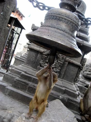 kathmandu 118