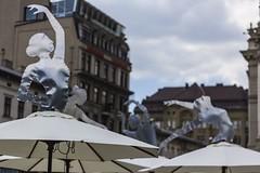 _MG_2016 (joeymarasek) Tags: europe lviv ukraine eastern