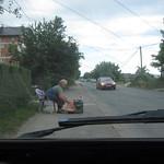 """Fruit Vendor <a style=""""margin-left:10px; font-size:0.8em;"""" href=""""http://www.flickr.com/photos/14315427@N00/14878319792/"""" target=""""_blank"""">@flickr</a>"""
