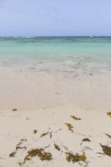 Dominicaanse Republiek (Mark Sekuur) Tags: sea beach strand zee puntacana dominicaanserepubliek bvaro caribisch laaltagracia azuurblauw bvaro