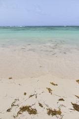 Dominicaanse Republiek (Mark Sekuur) Tags: sea beach strand zee puntacana dominicaanserepubliek bávaro caribisch laaltagracia azuurblauw bã¡varo