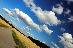 Gira il mondo gira (you spin me round) (italo svevo) Tags: summer sky sun nature clouds germany deutschland nikon nuvole colours estate sommer natur himmel natura colores diagonal campagna ciel cielo nubes verano nuvens alemania nikkor sole t nuages sonne colori allemagne germania farben heilbronn diagonale campi badenwrttemberg sereno heiter d7000
