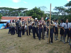 php scout photo 13