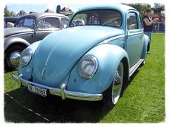 VW Beetle 1951 Split Windows (v8dub) Tags: auto old windows classic car vw bug volkswagen automobile beetle automotive voiture cox oldtimer split oldcar rare collector 1951 käfer coccinelle kever fusca aircooled wagen pkw klassik maggiolino worldcars