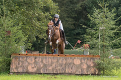 DSC00280_s (AndiP66) Tags: horse macro sports sport schweiz switzerland sony nevada luzern august sp di if alpha tamron concours pferd equestrian derby f28 solothurn ld horsejumping 70200mm wettbewerb 2014 springen kantonsolothurn springreiten cantonsolothurn wolhusen andreaspeters pferdespringen grueb martinameyer 77m2 a77ii ilca77m2 77ii 77markii slta77ii dubenmoos
