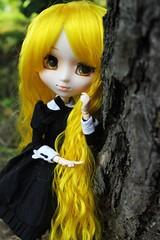 Sacha (Haylee Von Leimkhler) Tags: autumn black cute look yellow hair doll panda kei purple gothic goth mami polka fairy lolita kawaii pullip decora nanette sacha haylee spacecake tomo spacecakedoll