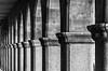 Somewhere under... (Walimai.photo) Tags: bw white black byn blanco branco nikon noir arch negro preto repetition gran column salamanca blanc arco vía rythm ritmo columna 18105 repetición d7000