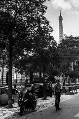 Paris (Teresa Surez) Tags: mars white black paris france blanco digital nikon noir negro champs eiffel blanche trocadero francia jardines marte