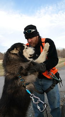 """Now Zarro Wants To Give Up A Big Bear Hug • <a style=""""font-size:0.8em;"""" href=""""http://www.flickr.com/photos/96196263@N07/15027779562/"""" target=""""_blank"""">View on Flickr</a>"""