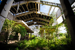 Forest Into a Plant (Luca Chiappin) Tags: plant mill forest nikon industrial oil urbex industriale archeologia esplorazione d7100