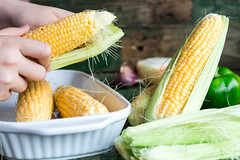 raw corn on the cob, prepare them for baking, hands (harmonyandtaste) Tags: summer food plant green nature field yellow closeup garden golden healthy corn holding hands raw hand natural sweet farm background grain harvest ears vegetable fresh health crop produce farmer organic agriculture cob maize sweetcorn kernels ripe corncob nutrition nutritious ingredient shuck