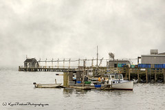 Done for the Day (Karin Pinkham (on and off)) Tags: ocean texture water boats pier moody maine foggy newengland stormy coastal rainy winterharbor gouldsboro lobsterboats hancockcounty birchharbor workingonthewater karinpinkham karinpinkhamphotography