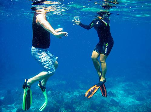 snorkellers IMG_0634bs