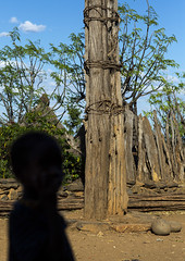 Generation Pole, On The Ceremonial Square, Erected During Initiation Ceremonies Konso Village, Southern Ethiopia (Eric Lafforgue) Tags: africa wood people tree men heritage childhood silhouette vertical outside outdoors photography wooden woods day exterior village symbol outdoor african traditional culture tribal unesco worldheritagesite pole ancestor trunk males omovalley gamo tradition ethiopia tribe ethnic generation anthropology oneperson symbolic indigenous ethnicity hornofafrica ethiopian gofa eastafrica ceremonial onlymen oromo colorpicture unrecognisableperson karati childrenonly oneboyonly konso africanethnicity 1people africanculture onechildonly colourpicture ceremonialsquare ethio1401073