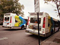 STM 31-150 (Alexander Ly) Tags: city canada bus nova de quebec montreal transport transit stm autobus lfs societe novabus