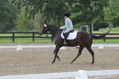 Dressage at Woodbine Schooling Show (September 21, 2014 - Chelsea, Michigan) (cseeman) Tags: horses chelsea michigan annarbor horseshow tests riders dressage horsefarm dressageshow woodbinefarms woodbinedressage dressage09192014
