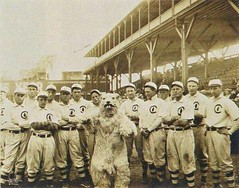 Chicago Cubs's timeline #ChicagoCubs #history #retro #vintage #bio #digitalhistory http://buff.ly/2eG7khm (Histolines) Tags: histolines history timeline retro vinatage chicago cubss chicagocubs vintage bio digitalhistory httpbuffly2eg7khm