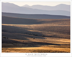 Eastern Sierra Ridges (G Dan Mitchell) Tags: endless ridges high desert rise sierra nevada crest eastern mountains evening light nature landscape california usa north america