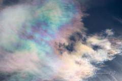 Nubes irisadas (Joaquim F. P.) Tags: campdetarragona cataluña cielo costadaurada costadorada españa mediterráneo nikon nubes paisaje salou tarragona catalonia spain meteo fenomeno meteorologico optico optica color iris d610 natura nature nwn clouds colorreal nops fenomenometeorologico hielo meteorologia nubesaltas irisadas optics dslr nikkor zoom afs atmosfera sol luz sun light atmosphere espectro spectrum colour solar meteorology crystals cristales ice sky cloud coloration nacarado iridiscente iridiscencia iridiscence cloudspotting cel meteorological weather optical phenomenon