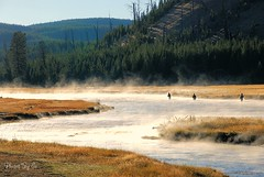 The Misty Cling (Eyes Open To Life) Tags: yellowstone madisonriver flyfishing morning mist nature wyoming fisherman fall autumn river water fishing sportsman