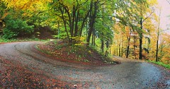 Pano natura (picturesbywalther) Tags: herbst autumn strasse street way weg alp oberbuchsiten kurve curve pano iphone nature