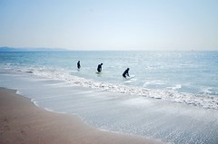 Surfing (Gai) Tags:    kamakura kanagawa japan  sea  seaside  man woman  sky   blue  beach