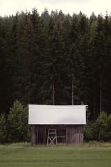 Long Time No Barn (trm42) Tags: summer kausala iitti finland mets lato barn forest suomi kes