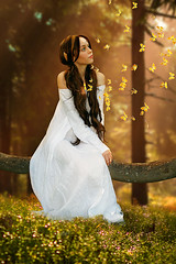 Princess (iblushay : Thank you for visiting and the faves) Tags: photoshop photomanipulation faestock forest flowers fairytale princess